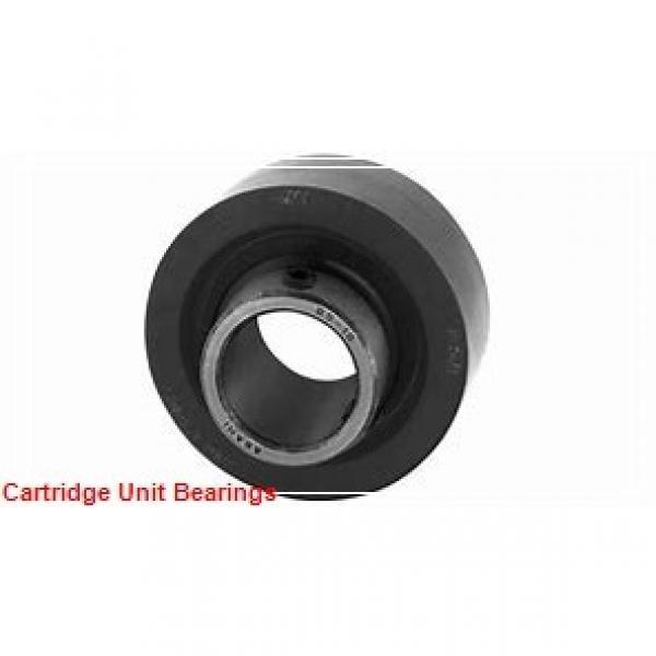 QM INDUSTRIES QVMC22V315SEM  Cartridge Unit Bearings #1 image