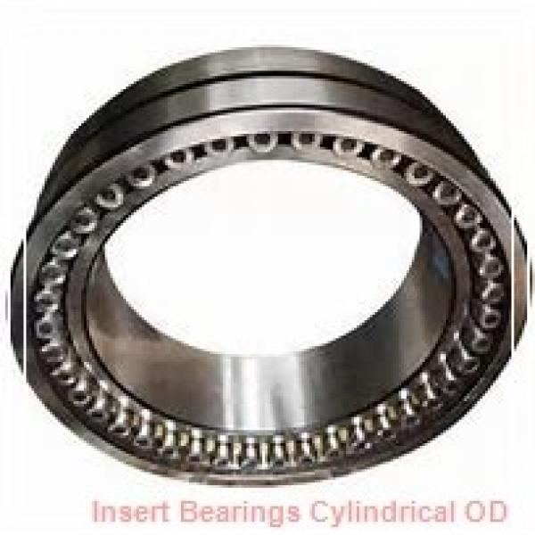 AMI SER207  Insert Bearings Cylindrical OD #1 image